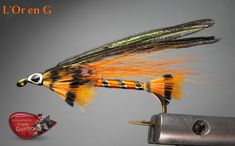 l'or en g Fishing Lures, Fly Fishing, Hair Wings, Fly Tying Patterns, Salmon Fishing, Streamers, Montages, Life, Ideas