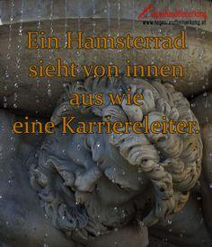 Ein Hamsterrad sieht von innen aus wie eine Karriereleiter. #QuoteOfTheDay #ZitatDesTages #TagesRandBemerkung #TRB #Zitate #Quotes
