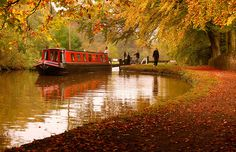 Autumn on the canal    A more local shot taken at Marple locks. Barge Boat, Canal Barge, Canal Boat, Boat Pics, Cabin Cruiser, Floating House, Narrowboat, Boat Stuff, Autumn Colours