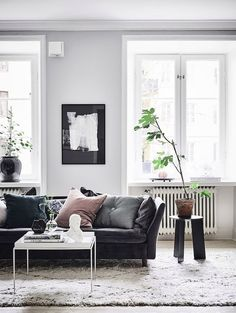 Living Room With A Black Leather Sofa And Plant Big Leaves
