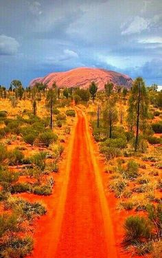 épinglé par ❃❀CM❁✿The red road to Uluru in Australia - if you've ever wanted to do a trip, check our luxury tours and benchmark tours that take in Uluru kirkhopeaviation. Places To Travel, Places To See, Travel Destinations, Great Barrier Reef, Beautiful World, Beautiful Places, Beautiful Roads, Simply Beautiful, Amazing Places