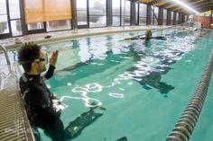 Freediving Instructors International Waterman Survival ...