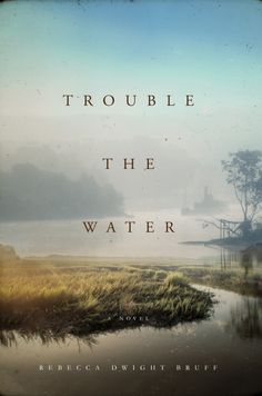 Cover Contest - Cover Contest Trouble the Water - AUTHORSdb: Author Database, Books and Top Charts Great Stories, True Stories, Civil War Heroes, New Books, Books To Read, Best Biographies, Vote Now, University Of South Carolina, Reading Groups