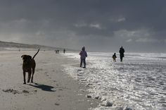 Frozen whitecaps and endless beach on Ameland, an island in the Northsea.