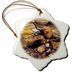 3dRose DYLAN SEIBOLD - PHOTOGRAPHY - SANDSTONE TIDAL POOL - 3 inch Snowflake Porcelain Ornament (orn_245718_1)
