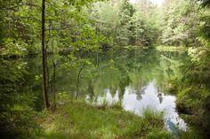Kultalähteen uhrilähde ja Hyyppäränharjun puhuva metsä Salon Kiikalassa | Retkipaikka