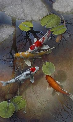 """Mystic Koi"" by Terry Gilecki"