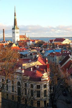 One of my favourite capital cities. Old Baltic port - Tallinn, Estonia Places To Travel, Places To See, Voyager C'est Vivre, Travel Around The World, Around The Worlds, Baltic Cruise, Regions Of Europe, Throughout The World, Travel Goals