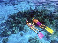 This tour takes you beyond the hotel zone to secluded coves and isolated beaches for the ultimate snorkel excursion. It's the only snorkeling tour in Cabo San Lucas and San Jose del Cabo combining power snorkeling, kayaking, and an Apex boat ride. For only 75 usd