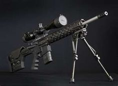 tricked out AR 15