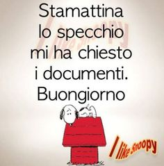 stamattina lo specchio Medical Humor, Learning Italian, Peanuts Snoopy, Day For Night, Funny Jokes, Positivity, Smile, Motivation, My Love
