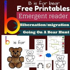 Free B is for Bear printables for pre - K through K.