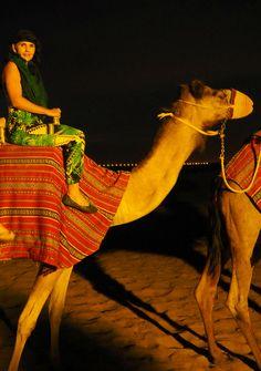 Dubai Camel Ride  #desert #safari #dubai  http://arabiannightsafari.com/Camel-Desert-Safari-Dubai.html