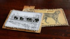 Animal ATC Cards - Serengeti from 7gypsies