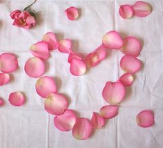 Eco Dyeing With Flowers: Part 1 | Free People Blog loved this for valentines day!!!!!