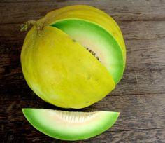 Boule d'Or Melon
