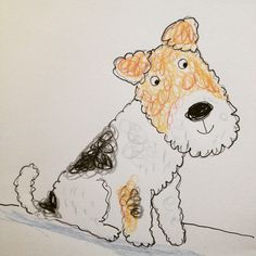 Wire Fox Terrier Ailie Busby