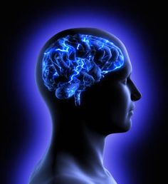 Discovery of quantum vibrations in 'microtubules' inside brain neurons supports controversial theory of consciousness -- ScienceDaily Brain Neurons, Brain Structure, Neuron Structure, Deaf Culture, Brain Waves, Kundalini Yoga, Yoga Meditation, Meditation Benefits, Pranayama