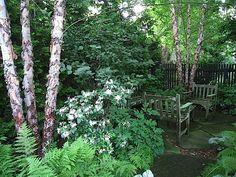 flagstone patio shade garden
