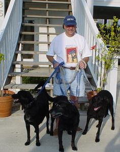 Katie the dog, Mayor of Sandy Ridge