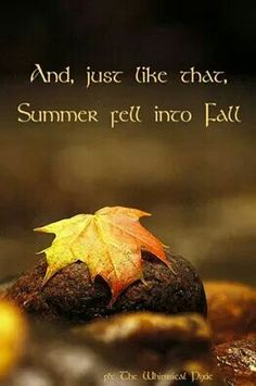 And just like that, summer fell into fall.
