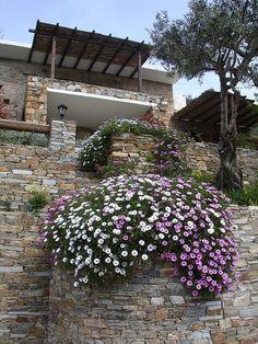 Mediterranean Garden House - list of drought tolerant plants