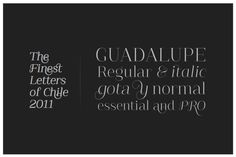Guadalupe Font, You Work For Them