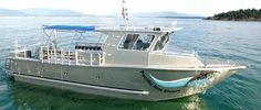 Pacific Rim Divers Limited - Scuba Diving And Snorkeling Charters Kona Hawaii, Manta Ray Night Charters Kona Hawaii, Charter Business