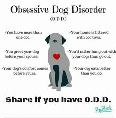 Love this! Obsessive Dog Disorder! -