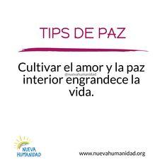 (20) SocialGest Paz Interior, Calendar, App, Life, Apps, Life Planner, Menu Calendar