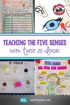 Teach Kids the Five Senses With These 20 Free and Fun Ideas. Five senses activities to teach about touch, taste, smell, sight, and hearing. Go on a sound walk, hold a taste test, create smell bottles, and much more. #activities #activitiesforkids #learningathome #elementaryschool #books #anchorcharts Senses Activities, Preschool Science Activities, Kindergarten Science, Color Activities, Infant Activities, Kindergarten Anchor Charts, Learning Colors, Play To Learn, Early Learning