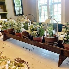 This farmhouse chicken feeder centerpiece is perfect for decoration every season. It makes for a charming and unique display! Add plants, herbs, or flowers in the spring and summer. in the fall fill i