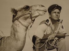 """""""Captain Gallant of the Foreign Legion"""" French Foreign Legion, Warriors, Camel, Africa, Military, Adventure, Animals, Animales, Animaux"""