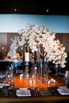 <3 Orchids
