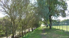 Vistas sobre o rio Jamor (do lado esquerdo) e do Complexo Desportivo do Jamor (do lado direito).