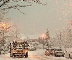 Bild über We Heart It https://weheartit.com/entry/146540239/via/7623287 #cars #christmas #cold #lights #seasons #snow #snowflakes #streets #trees #winter #xmas