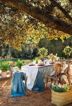 Mesa con vajilla bajo un árbol del jardín