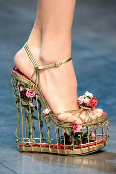 Dolce & Gabbana shoes 2013 I wouldn't wear them but they're pretty neat to look at! They kinda look like you could stick your pet bird in there and go for a walk! Crazy Shoes, Me Too Shoes, Weird Shoes, Crazy High Heels, Cool High Heels, Unique Heels, Mode Statements, Shoe Boots, Shoes Heels