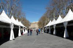 #EsculturasMorla ante un nuevo día en la Feria de Artesanía de Valladolid