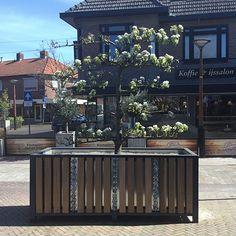 In het centrum van Tubbergen zijn 8 prachtige, opvallende plantenbakken geplaatst. De plantenbakken zijn op maat gemaakt voor de Gemeente Tubbergen in opdracht van Ewilgro Hoveniers. Plants, Plant, Planets