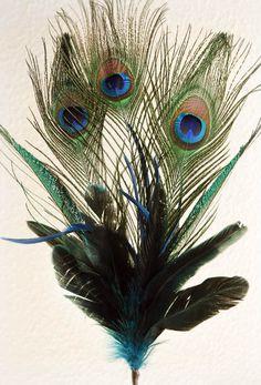 Blue Peacock Feather Spray