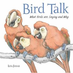 Bird Talk by Lita Judge - An introduction to ornithology for kids that's receiving positive reviews.