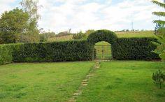 Arch, Sidewalk, Outdoor Structures, Toscana, Garden, Plants, Walkway, Garten, Arches