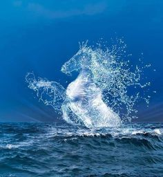 It was once believed that Poseidon created horses from water.