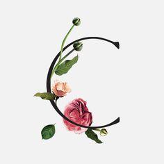 Wildflower — Venamour