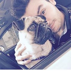 Baila Nena Con Marama!  @lasminionsdeagus Instagram profile - Pikore French Bulldog, Queens, Instagram, Amor, Female Dwarf, Celebs, Uruguay, Guys, Celebs