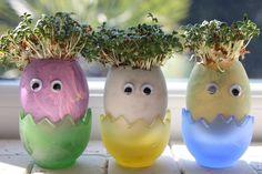 bemalte Eiervasen mit Kresse befüllt