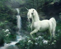 gif unicorn images | Fantasy Unicorn