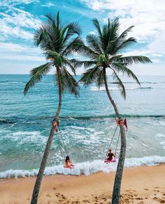 🤗 Swings on the beautiful beach in Dikwella, Sri Lanka 😍 Traveling Alone Quotes, Travel Alone, Southern Province, Nature Quotes Adventure, Travel Agency, Travel Around The World, Beautiful Beaches, Sri Lanka, Travel Inspiration