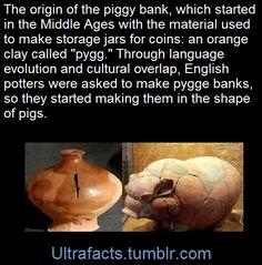 "idk, man. other languages call it ""pig bank"" too... Sparschwein..."